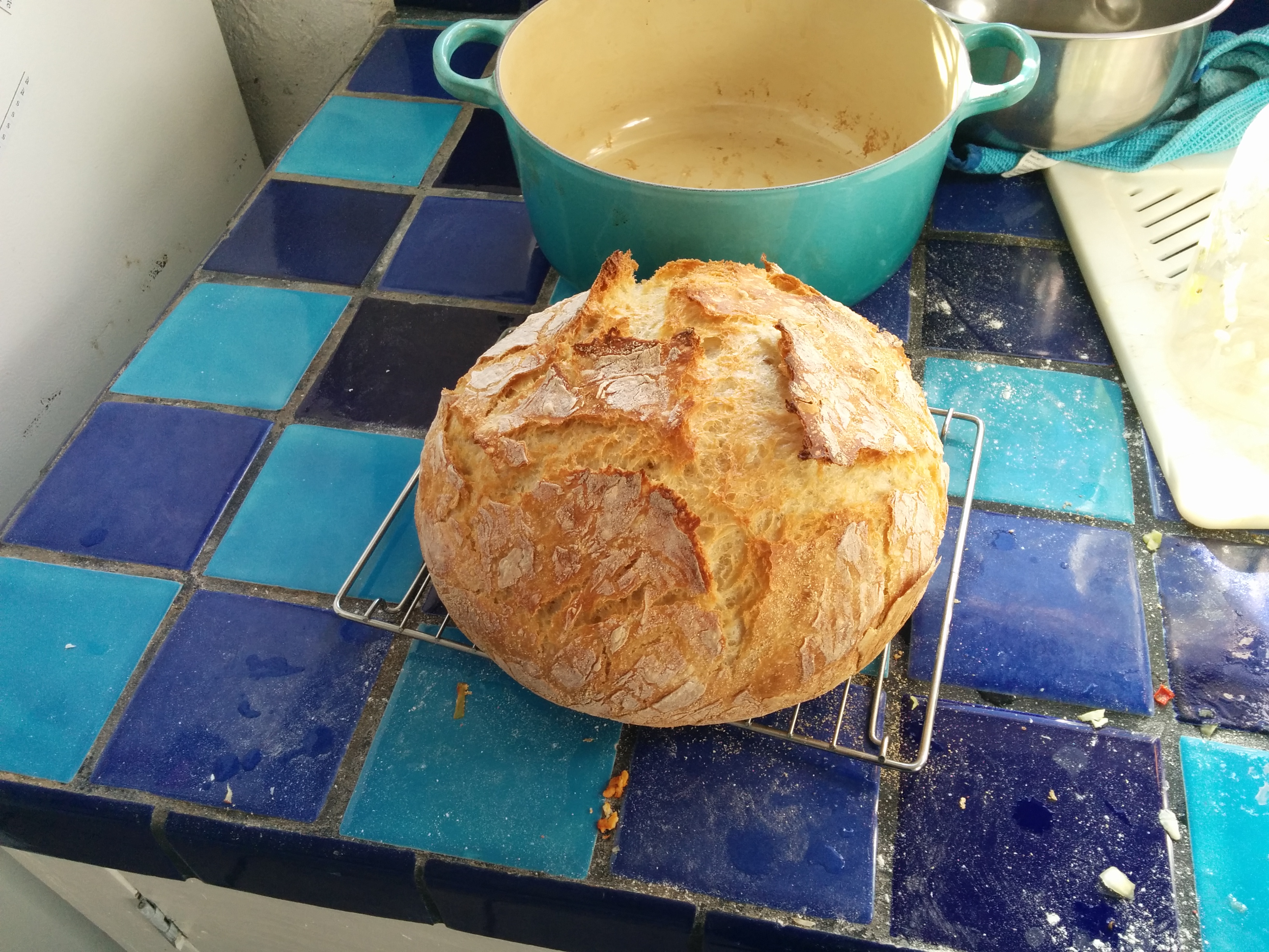 The most recent loaf of dutch-oven bread.